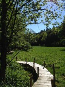 Ferienwohnung am Wesebach in der Wesemühle bei Frankenau